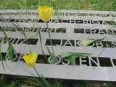 Friedhof 4 Mai 07 01: